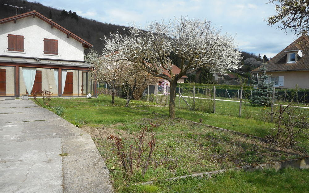 Villa : Terrain arboré