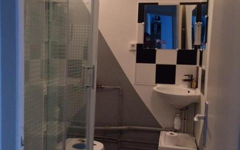 appartement   type 2 : salle d'eau
