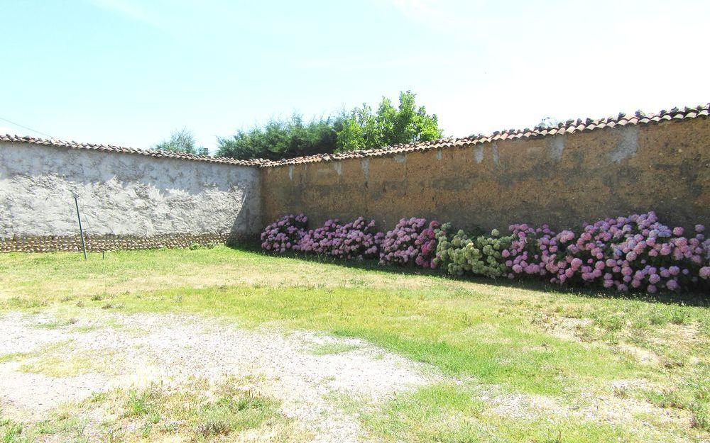 Maison Ancienne : exterieur avec sa haie  de hortensias