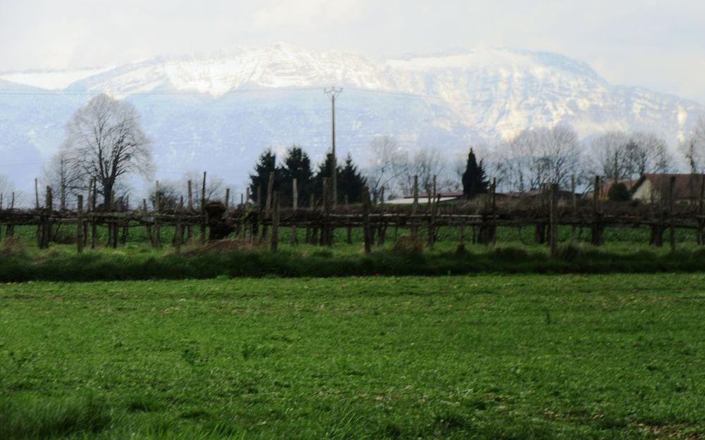 VILLA : vue  sur nos belles montagnes